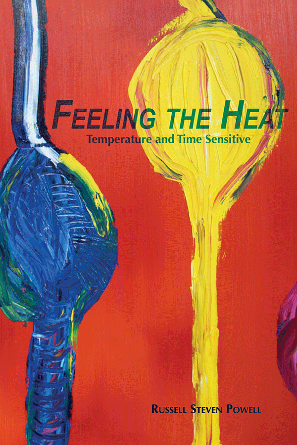 Feeling the Heat cover